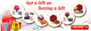 Best Chance to Get Free Gifts Offers at Infibeam.com