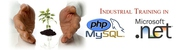 Training - PHP,  Web Designing,  Project,  MCA Project,  Live Project,