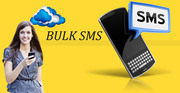 The Timeshare Bulk SMS Software In Gujarat
