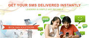 Bulk SMS Gateway-The Vital Marketing and Campaigning Tool