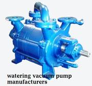 Hire Consultant Before Buying Watering Vacuum Pump