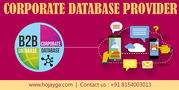 Corporate Database in Delhi is Essential for your Success