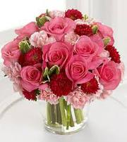 Send  flower to Surat