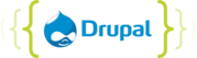 Drupal Website Development & Designing Services company India | Ahmeda