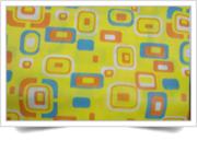 PP Laminated Non Woven fabric