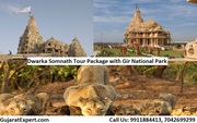 6 Days / 5 Nights Dwarka Somnath Tour Package with Gir National Park