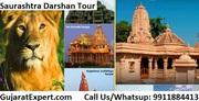 Gujarat Wildlife Tour Safari Packages