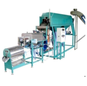 Automatic Cashew Processing Machine in Ahmedabad