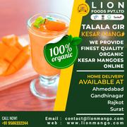 Talala Gir Organic Kesar Mango | Lion Mango | Carbide Free Mangoes