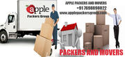 Apple packers group