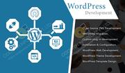 Wordpress Development Company in Ahmedabad | Oddeven Infotech