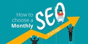 Best monthly SEO package for increase website organic traffic instantl