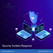 Cyber Security Incident Response Services